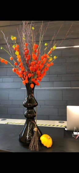 Photograph of orange Chinese lantern plants inside a tall, black vase, with brown twigs, a decorative witches' broom and small Halloween pumpkin. Corporate florist, event flowers, office flowers, sustainable florist, Central London florist, Local florist, Soho Florist, Contemporary Floral Display. Weekly Office Flowers; Weekly Flowers; Weekly Contract Flowers; Reception Desk Flowers; Office Reception Flowers