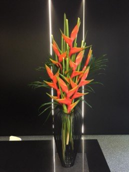 birds of paradise, palm leaf, heliconias, lobster claws