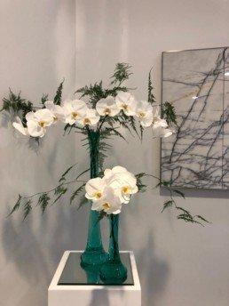 orchids, asparagus fern,