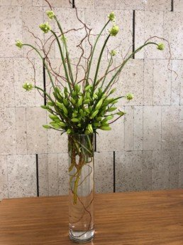 lilies, chincherinchee