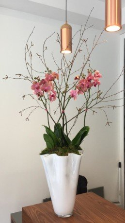 Photograph of pink orchids with green leaves and twigs in a tall white vase with a wave, on a brown table. Corporate florist, event flowers, office flowers, sustainable florist, Central London florist, Local florist, Soho Florist, Contemporary Floral Display. Weekly Office Flowers; Weekly Flowers; Weekly Contract Flowers; Reception Desk Flowers; Office Reception Flowers