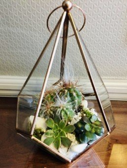 Photograph of small cacti and alpine plants with white stones, inside a clear glass pointed terrarium. Corporate florist, event flowers, office flowers, sustainable florist, Central London florist, Local florist, Soho Florist, Contemporary Floral Display. Weekly Office Flowers; Weekly Flowers; Weekly Contract Flowers; Reception Desk Flowers; Office Reception Flowers