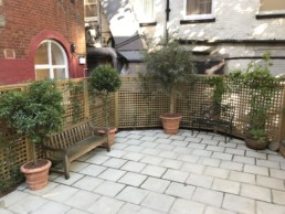 Photograph of a Mediterranean garden project created for St Annes Church vestry garden, in Soho, with grapevines, Jasmine, Olive Trees, Orange Tree and Bay to create a tranquil space for contemplation in the heart of the city. Planting Projects; Landscaping; Landscape Design; Courtyard Planting; Plant Maintenance; Soho Florist