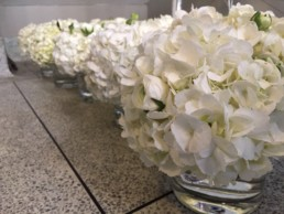 White hydrangeas and white roses arranged in small, clear, round vases. Office plants, corporate plants, plant maintenance, roof garden, courtyard. Landscape maintenance Sustainable planting; Pesticide Free; Balcony design; urban garden design