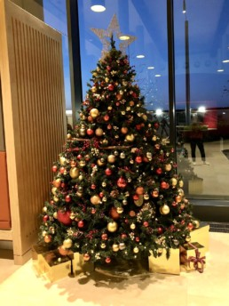 Photograph of an 8ft artificial Christmas tree decorated in Nordic theme decorations with a gold star: orange, red, grey and gold baubles with artificial red berries, cinnamon sticks, pinecones and oranges. Beneath the tree is a gold skirt and gold presents wrapped in ribbon. Office Christmas Decor; Christmas decorations, Christmas florist, Office decorations, Xmas decorations, Christmas tree, Artificial Christmas tree, Real Christmas tree. Office Christmas; Christmas decorators Wreath making; bespoke Christmas Decor.