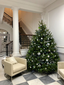 Photograph of an 8ft real Christmas Tree decorated with Evergreen theme decorations with a silver spiky star: clear green baubles, an assortment of silver baubles and artificial eucalyptus foliage. To the left-hand side of the tree is a cream upholstered chair on top of checkered flooring. Behind the tree is a pillar and a staircase with a black wrought-iron bannister. Office Christmas Decor; Christmas decorations, Christmas florist, Office decorations, Xmas decorations, Christmas tree, Artificial Christmas tree, Real Christmas tree. Office Christmas; Christmas decorators Wreath making; bespoke Christmas Decor.
